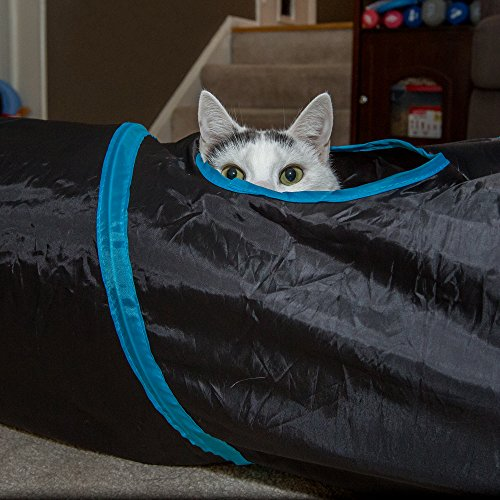 PetLike Deluxe Collapsible Cat Tunnel Toy By Pet Tube For Kittens, Puppies, Rabbits And Other Small-Sized Pets Fun And Durable Hideaway For Entertainment, Training, Exercise And Running by PetLike (Image #4)