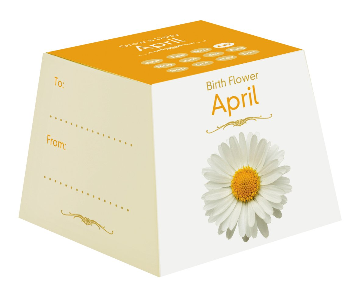 Gift republic april birth flowers amazon garden outdoors izmirmasajfo