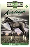 The Lost Foal, Joanna Campbell, 006106632X
