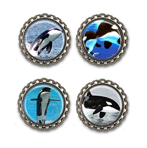 Orca Bottle Cap Magnets ()