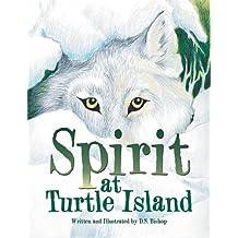 Spirit at Turtle Island