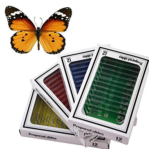 48 Plastic Prepared Microscope Slides Kit BONUS Butterfly Specimen for Kids Student Science STEM Education
