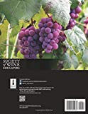 2020 Certified Specialist of Wine Study Guide