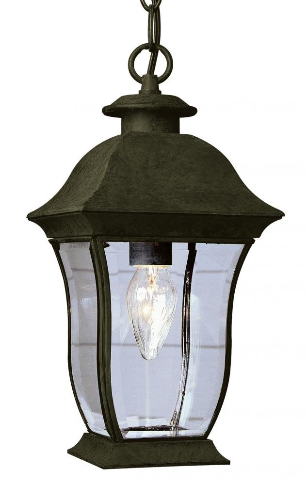 One Light Weathered Bronze Clear Beveled Curved Rectangle Glass Hanging Light by Joshua Marshal