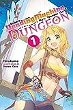 Reborn as a Vending Machine, I Now Wander the Dungeon, Vol. 1 (light novel)