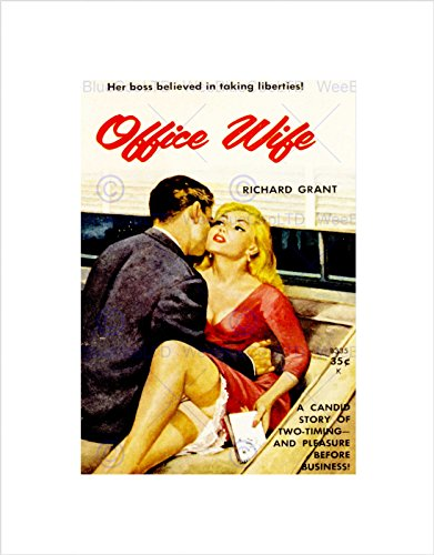 Vintage Book Cover Office Wife Sexy Romance New Framed Art Print Mount B