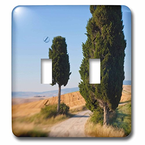 danita-delimont-italy-winding-road-val-d-orica-tuscany-italy-light-switch-covers-double-toggle-switc
