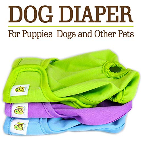 Pet Magasin Reusable Dog Diapers, Extra Small, Pack of 3 (Doggie Diapers For Female Dogs In Heat)
