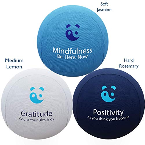 MindPanda - Stress Relief Ball Set - Mind Hand Therapy Stress Ball Bundle - Aromatherapy - Motivational Quotes - Includes Free Mindfulness E-Book & Hand Exercise Leaflet - Adults Teens Children