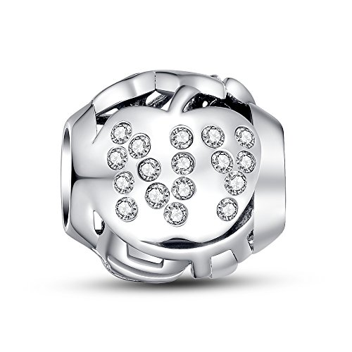 Glamulet Art Women's 925 Sterling Silver Clear Crystal New York Apple Openwork Charm Fits Pandora Bracelet (Twin Fit Dress Form compare prices)