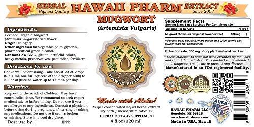 Mugwort Liquid Extract, Organic Mugwort Artemisia vulgaris Tincture 2 oz