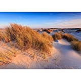 Non-woven photo wallpaper 400x280 cm PREMIUM PLUS Wall Mural Photo Wallpaper Picture - Beach Dune Water - no. 246