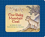 One Baby Mountain Goat