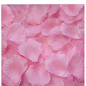 CO RODE 1000PCS Silk Rose Petal Pink Wedding Flower Decoration Table Scaters Confetti Favor Bridal Party Decoration 63