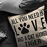 High quality Personalized All you need is love and a cat named Cat Throw Pillow Covers, Pillow Custom name Cat Lover Cushion, Housewarming gift