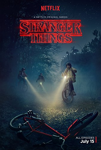 Stranger Things Poster  Netflix 24x36 inches C