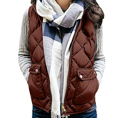 GOVOW Vest Coat for Ladies Womens Sleeveless Pockets Waistcoat Solid Cotton Hooded Winter Loose(US:10/CN:XL,Brown )
