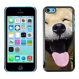 Paccase / SLIM PC / Aliminium Casa Carcasa Funda Case Cover - Happy Shiba Inu Dog Canine - Apple Iphone 5C