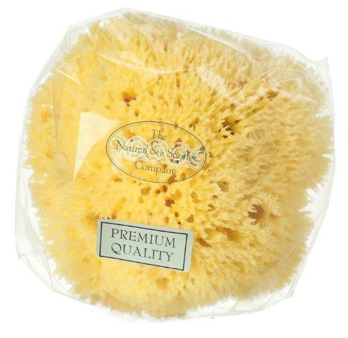Esponja natural (marina) Honeycomb (12cm) GroceryCentre