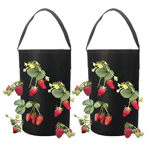 Hanging Strawberry Planter - TRIEtree Hanging Planter Bag, 2 Pack Strawberry Planter Garden Growing Bag Fabric Planting Containers