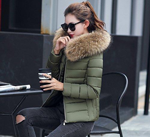 Veste Manteau Elegant Jacket Court Sentao Femme Hiver HOwFqxnSY