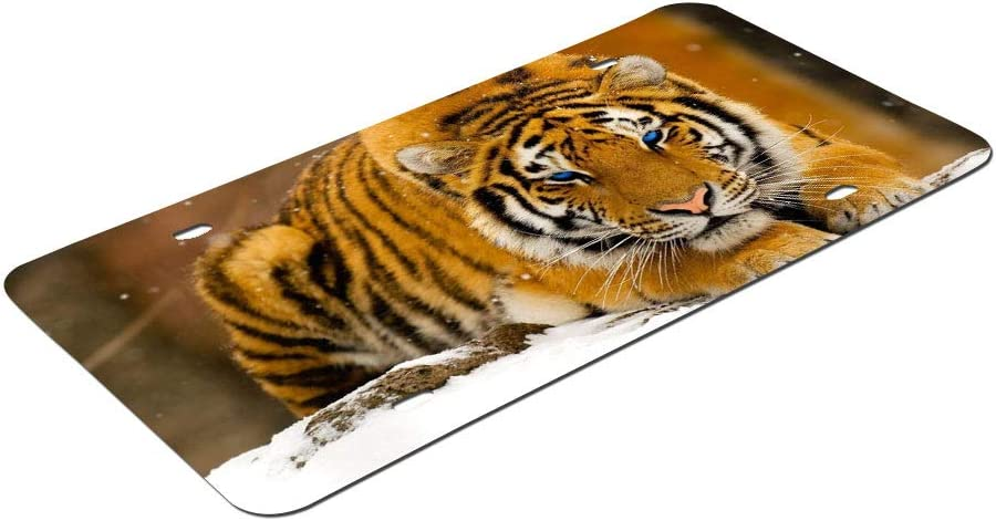 DKISEE Abstract Snowy Tiger License Plate Cover Aluminum Car Front License Plate