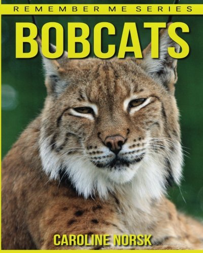 bobcats-amazing-photos-fun-facts-book-about-bobcats-for-kids-remember-me-series