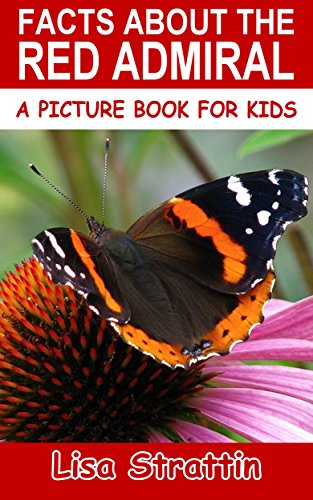 red admiral - 9