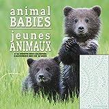 Trends International Animal Babies %28Bi...