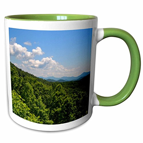 3dRose ET Photography - Mountains - An overlook in the North GA mountains - 11oz Two-Tone Green Mug - North Ga Outlet
