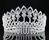Janefashions Floral Full Crown Clear Austrian Rhinestone Crystal Tiara Pageant Prom Lg T1406 Silver