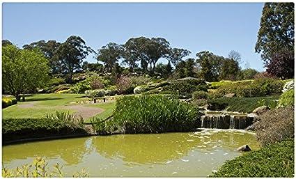 Australia jardines cascadas césped árboles Cowra jardín japonés naturaleza viaje sitios postal Post tarjeta: Amazon.es: Oficina y papelería