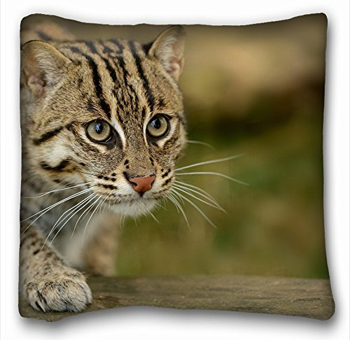 Decorative Square Throw Pillow Case Animals civet cat fishing cat s fishing cat asian view wild 18