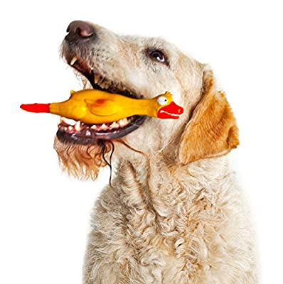Dog Toys For Aggressive Chewers - Tough Yellow Squeaking Duck - Manufactured From Soft Material That Squawks When Pressed - Ideal For Small and Medium Dogs - Give Your Dog A New Toy Today!