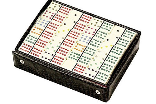 Double Six Professional Dominoes - White with Black Dots, Case Color May Very by CHH
