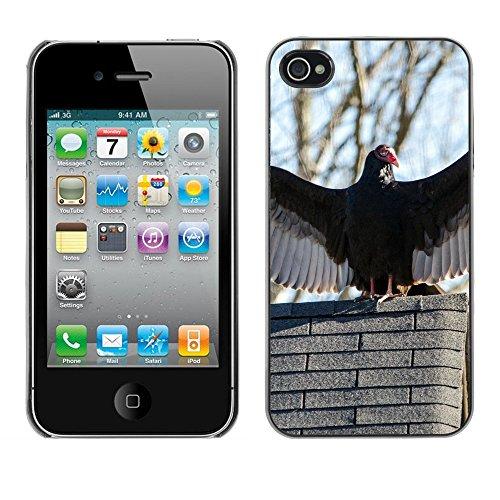 Premio Sottile Slim Cassa Custodia Case Cover Shell // F00004804 Turquie Vautour // Apple iPhone 4 4S 4G