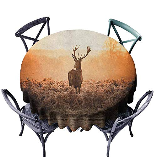 Mannwarehouse Hunting Waterproof Tablecloth Red Deer in The Morning Sun Wilderness Nature Scenery Countryside Rural Heathers Great for Buffet Table D67 Brown Orange ()