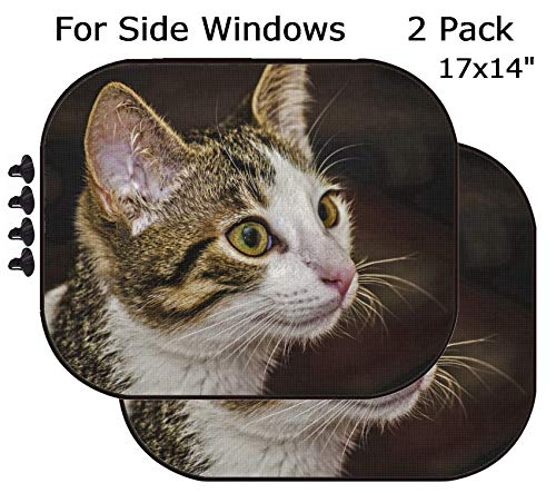 (MSD Car Sun Shade - Side Window Sunshade Universal Fit 2 Pack - Block Sun Glare, UV and Heat for Baby and Pet - Image 20299876 Female Tabby Kitten Portrait)