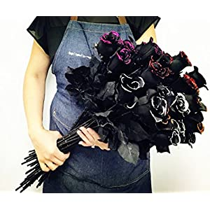 Angel Isabella 2 Dozens of Halloween Long Stem Artificial Roses with Glitters Red, Silver, Orange,Begonia Pink Perfect for Making Centerpiece,Wreath 113
