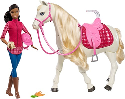 Barbie Dream Horse & Black Hair Doll