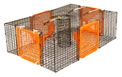 Protoco 19 x 24-Inch Shrimp/Crawfish - Trap Shrimp