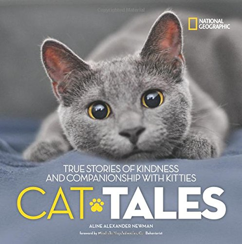 Cat Tales: True Stories of Kindness and Companionship With Kitties (Stories & (Easy To Read Halloween Poems)