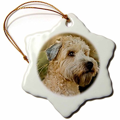 (3dRose Soft Coated Wheaten Terrier Portrait Snowflake Porcelain Ornament, 3-Inch)