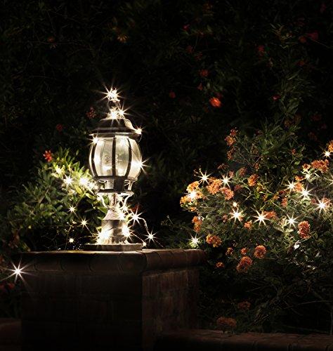Backyard Twinkle Lights: Deneve Led Copper String Lights (100ft. Standard) Dimmable