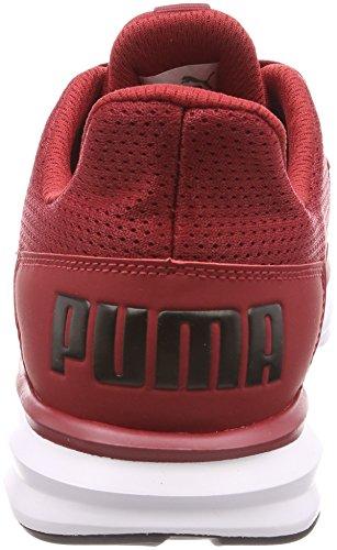 Da Uomo Burgundy Puma Enzo Corsa Street rosso Scarpe xTqOn4wI