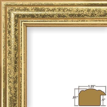 Amazon Craig Frames 314gd 3 By 5 Inch Picture Frame Ornate