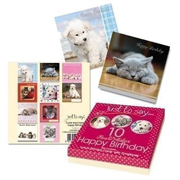 Amazon 10 X Childrens Adult Luxury Happy Birthday Cards Pets