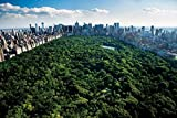 PosterPalooza Central Park New York By Unknown