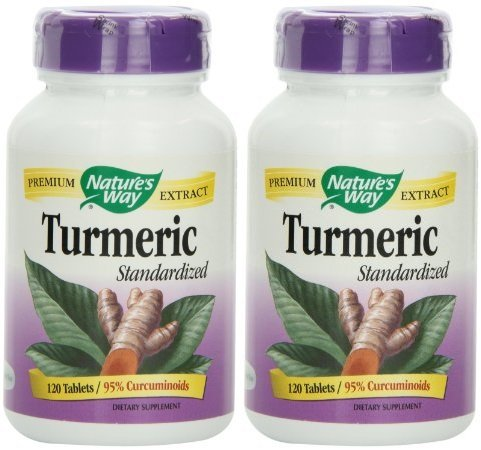 Nature's Way Turmeric 240