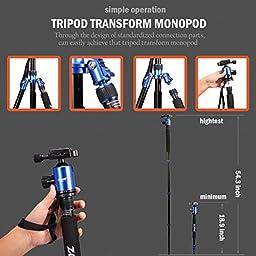 Zomei Camera Tripod 65-inch Lightweight Tripod, Monopod Tripod, Aluminum Portable Detachable Monopod, 360 degree Ball Head, 1/4\